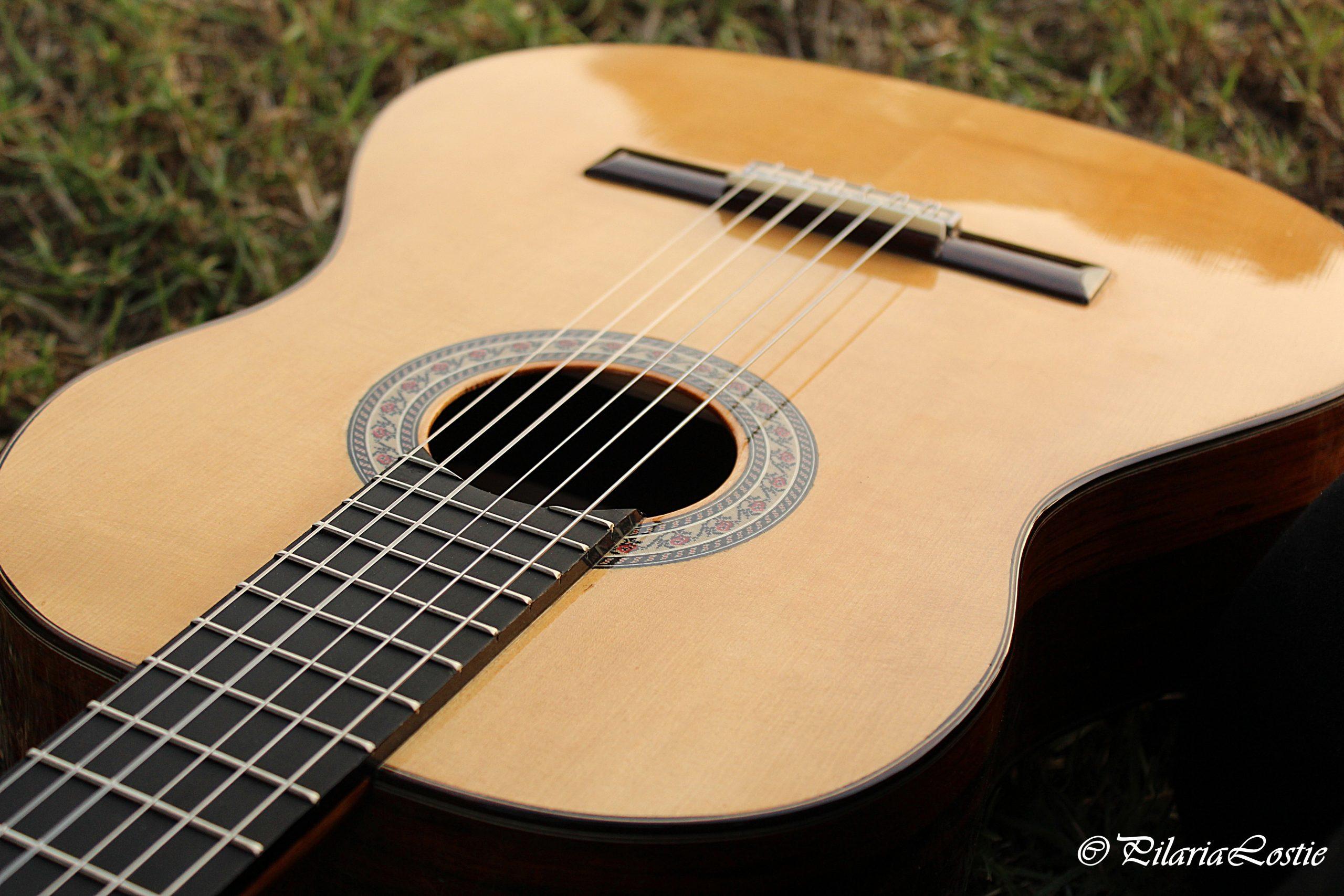 guitarra de luthier